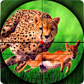 Game Cheetah Hunter 2016 APK for Kindle