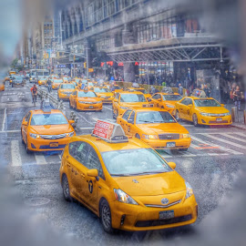 TAXI! by Wendy Greenhut - Transportation Automobiles ( #nyc#taxi#cab )