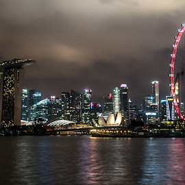 Mono Singapore by Kyle Durant - City,  Street & Park  Skylines ( clouds, water, threatening, moody, singapore flyer, night, singapore, nightscape )