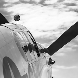 P52 mustang by Dave Martin - Transportation Airplanes