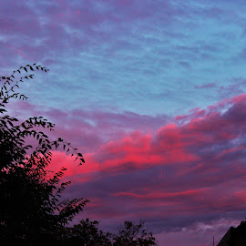 Purple and Red Fluff by Roxanne Garcia - Landscapes Cloud Formations ( clouds, sky, red, nature, purple, blue, late, summer, fluff, beauty, evening )