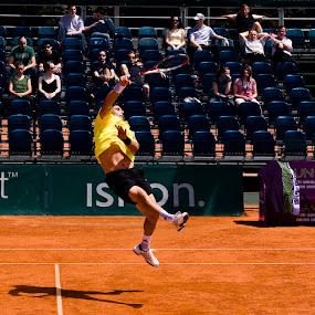 ATP_ZagrebOpen_01 by Tigi Borg - Sports & Fitness Tennis ( finals, 2009, tigiphoto, sports, croatia, tennis lifestyle, smash, jump, color, outdoor, atp, 2012, men )