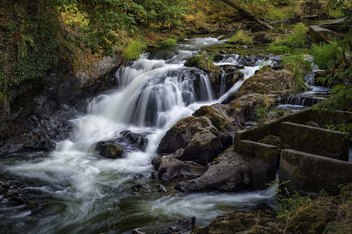 OCC Middle Tumwater Falls by Scott Wood - Landscapes Waterscapes ( water, washington, park, grass, river. nature, waterfall, trees, scenic, tumwater,  )