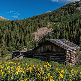 Independence Solitude by James Martinez - Buildings & Architecture Decaying & Abandoned ( cabin, mountains, green, old town )