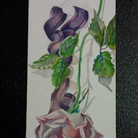 Rose by Nikki Loehmer - Painting All Painting