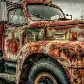 Nesting by Chris Cavallo - Transportation Automobiles ( old car, maine, truck, nest, rusty, rust, decay, abandoned )