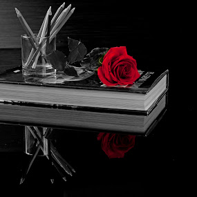 Red rose by Cristobal Garciaferro Rubio - Artistic Objects Still Life ( pencil, rose, reflection, book, reflections )