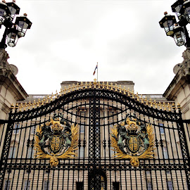 Gates to Buckingham Palace by Lauren Ann - Buildings & Architecture Public & Historical ( london, palace, gate )