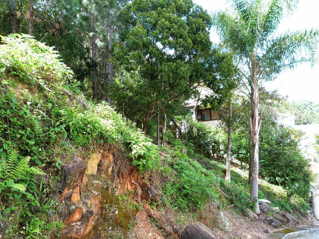Terreno, Sambaqui, Florianópolis (TE0287) - Foto 2