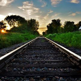 Sunbath on track by Mario Monast - Transportation Railway Tracks ( train tracks, transport, colors, summer, sunshine, sunrise, tracks, transportation, sunbathing, sun rays, rays )