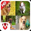 50 Dog sounds APK Descargar