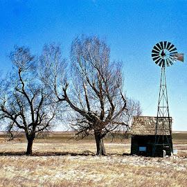 Minus Ten by Bryan Lowcay - Landscapes Prairies, Meadows & Fields