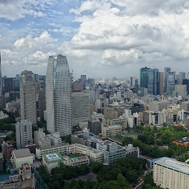 Tokyo by Fuad Arief - City,  Street & Park  Skylines ( citiscapes, tokyo, landscape photography, skylines, tokyo tower )