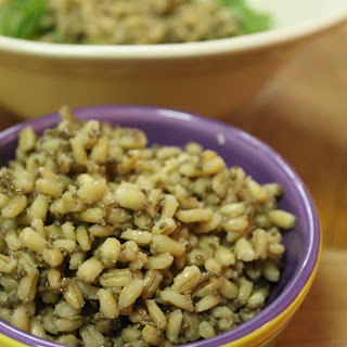 Barley Recipes