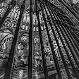 catedral León by Roberto Gonzalo Romero - Buildings & Architecture Places of Worship ( león, catedral )