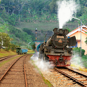 The Old Train by Basuki Mangkusudharma - Transportation Trains ( old, indonesia, lockomotive, train, steam )