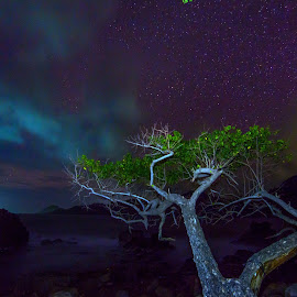 by Hanan Maulana - Landscapes Starscapes