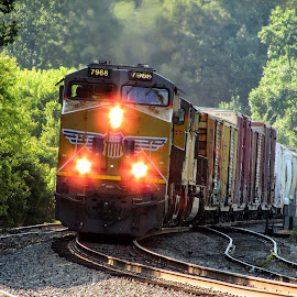 Three Lights by Rick Covert - Transportation Trains ( railroad, locomotive, arkansas, railroad tracks, arkansas photographer, trains, lights, train )