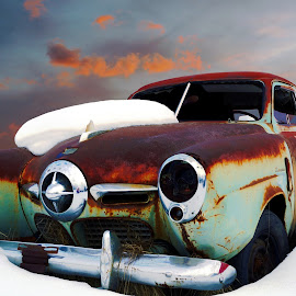 Champion by Joerg Schlagheck - Transportation Automobiles ( car, studebaker, old, unique, studebaker champion, awesome, wreck, quality, rusty, green. )