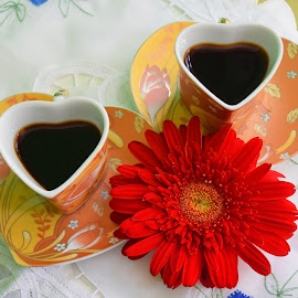 Love is in the air... or in the coffee :) by Vera Vilela - Food & Drink Alcohol & Drinks
