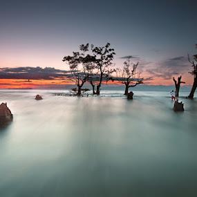 sweeping sarangani by Rodrigo Layug - Landscapes Waterscapes ( nature, waterscape, landscape )