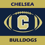 Chelsea Bulldog Football APK Image