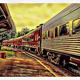 vintage train by Beth Schneckenburger - Transportation Trains ( vintage, railroad, train, tracks, evening )