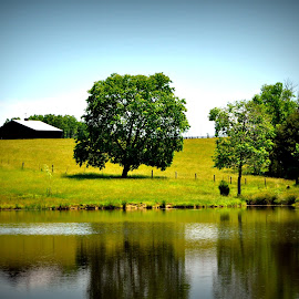 Pieceful by Tammy Price - Landscapes Prairies, Meadows & Fields ( field, trees, barns, fishing, pond )
