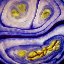 Onion Face by Kittie Groenewald - Abstract Patterns
