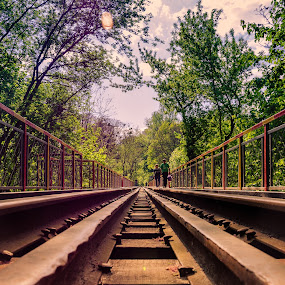Rails by Andrey Dayen - City,  Street & Park  City Parks ( rails, park, railway, bridge, #jipchallenge #paisley #photography )