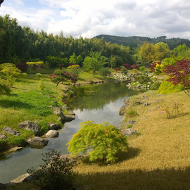 Japanese garden by Paul Preston - Landscapes Forests