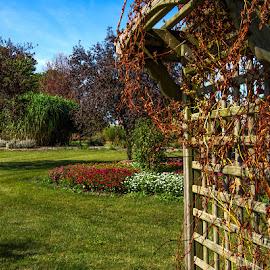 Through The Gate by James Kirk - City,  Street & Park  City Parks ( fall, garden., gate )