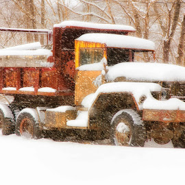 Old Truck in Snow by Carl Albro - Transportation Automobiles ( red, truck, snow, transportation )