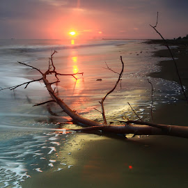 morning glory by Khairi Went - Uncategorized All Uncategorized ( aceh, waves, asia, sunrise, beach, landscape,  )