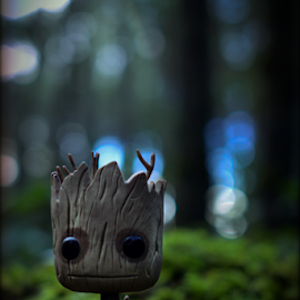 Groot by Dustin Pittman - Artistic Objects Toys