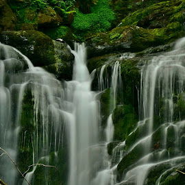 Torc  waterfall by Nik Hall - Nature Up Close Water ( water, ireland, waterfalls, killarney, waterscape, waterfall, long exposure, longexposure )