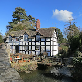 Cottage in Eardisland by Caroline Beaumont - Buildings & Architecture Homes ( old house, black and white cottage, half timbered cottage, cromwellian cottage, old cottage )