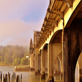 Bridge from and Angle by Lori Pagel - Buildings & Architecture Bridges & Suspended Structures ( water, oregon, structure, sideview, twilight, architecture, coastal, coast, florence, tree, fog, outdoors, architectural, trees, bridge, wet, light, evening, siuslaw bridge, river )