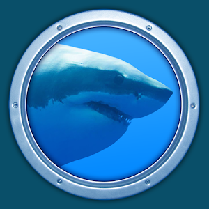Sharks 3D - Live Wallpaper For PC / Windows 7/8/10 / Mac – Free Download