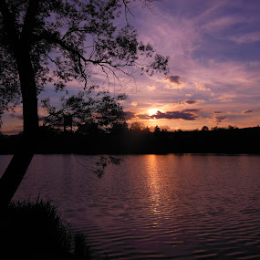 Evening at the pond by Libuše Kludská - Landscapes Sunsets & Sunrises