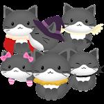 Bubble Cat Icon