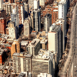 Lakeshore Drive by Fraya Replinger - City,  Street & Park  Street Scenes ( illinois, buildings, lakeshore drive, aerial, chicago, city )