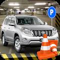 Prado Car Parking Challenge
