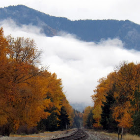 FALL TREE LINE by Cynthia Dodd - Novices Only Landscapes ( clouds, train tracks, mountain, sky, nature, colorful, outdoors, fall, trees, rain, river )