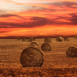 hay bales by Love Time - Digital Art Places