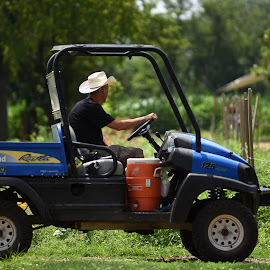 Motoring on the Farm  by Lorraine D.  Heaney - Transportation Other