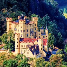 Hohenschwangau Castle by Pravine Chester - Buildings & Architecture Public & Historical ( photograph, bavaria, hohenschwangau castle, germany, castle, architecture )