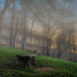 Foggy sunrise by Bojan Bilas - City,  Street & Park  City Parks