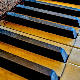 Keys by Barbara Brock - Artistic Objects Musical Instruments ( music, musical instrument, black and white, piano keys )