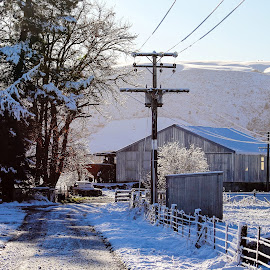 Fresh Snow on the Farm by Benjamin Dobbs - Landscapes Weather ( farm, mountain, winter, cold, snow )